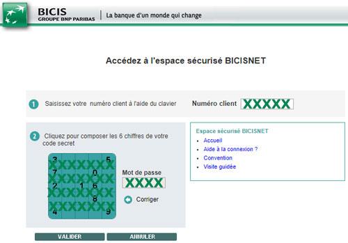 BICISNET Identification